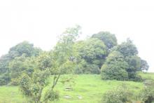 Tourism Area of Pauwadungma Rural Municipality